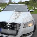 best ceramic car coating